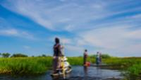 Exploring the Okavango Delta in a traditional African mokoro |  <i>Graham MacGregor</i>