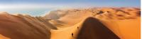 Climbing the sand dunes of Sossusvlei |  <i>Peter Walton</i>