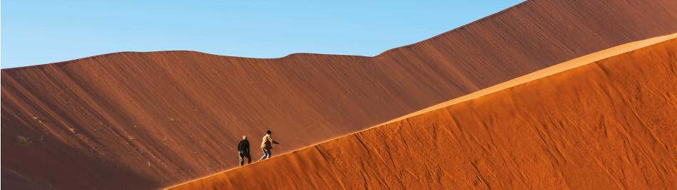 Rolling hills in the heart of the Namib Desert -  Photo: Peter Walton