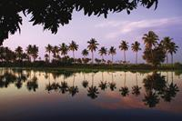 Backwater_Reflections_India-medium