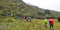 Bring an umbrella! Bhutan trekking with World Expeditions