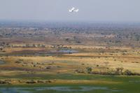 A plane flies over Okavango Delta - seen on a Botswana Safari