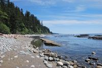 image of coastal scenery on west coast trail