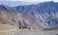 Spectacular views from the Ganda La Pass on our Markha Valley Trek. Photo by Bruce Gray