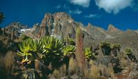 Mount Kenya in Africa