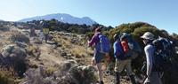 World Expeditions - Hiking Mt Kilimanjaro
