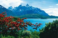 Torres_Paine_Natational_Park_Patagonia-small