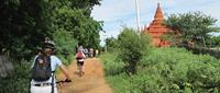 Things to do in Southeast Asia? Cycle in Bagan for a day!
