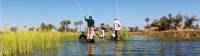 Cruising the Okavango Delta |  <i>Peter Walton</i>