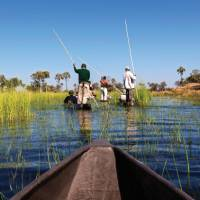 Cruising the Okavango Delta | Peter Walton