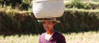 Local woman carrying farmed crops on her head | Ian Williams