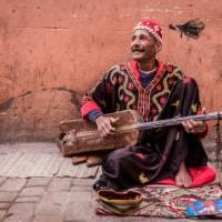 Musician plying his trade in the medina, Marrakesh   Richard I'Anson
