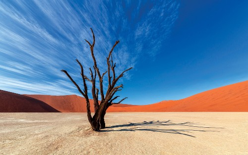 Colours of Deadvlei&#160;-&#160;<i>Photo:&#160;Peter Walton</i>