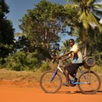 Local boy cycling along a rural road | Bruce Taylor