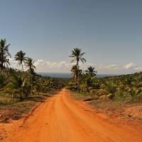 Vibrant colours of rural roadways | Bruce Taylor