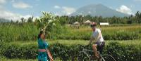 Glimpse of local culture on the Bali Cycle Adventure