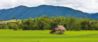Lonely hut in the landscape of  Vientiane | Peter Walton