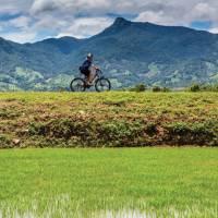Enjoying the ride on through rural Vietnam   Richard I'Anson