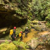 Head deep into a canyon in the Blue Mountains
