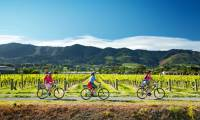 Cycling along the Nelson Great Taste Trail |  <i>Dean McKenzie</i>