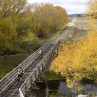 Cycling along the Otago Rail Trail | Andrew Bain