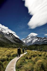 Walking along the Mt Cook boardwalks&#160;-&#160;<i>Photo:&#160;Hiking New Zealand</i>