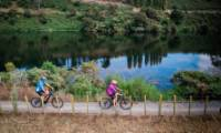 Exploring the Waikato River by bike |  <i>Waikato River Trail</i>