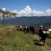 Walking the historic Kokoda Track, a once in a life time challenge   Ryan Stuart