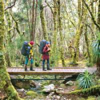 Walking in Cradle Mountain Lake St Clair National Park | Don Fuchs