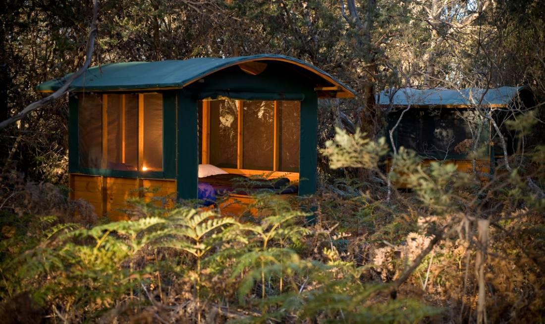Maria Island accommodation