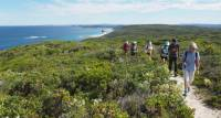 Explore the Walpole to Denmark section of the Bibbulmun Track
