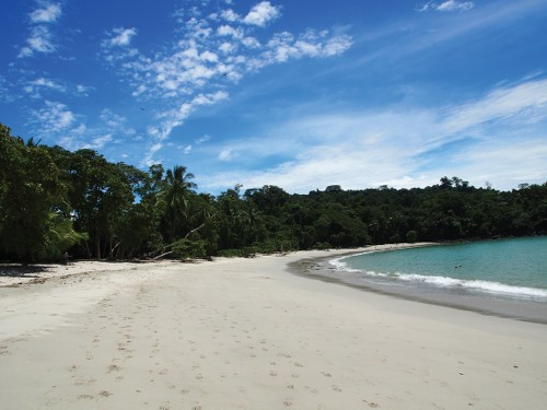 Pristine beach in Manuel Antonio national park, Costa Rica&#160;-&#160;<i>Photo:&#160;Sophie Panton</i>