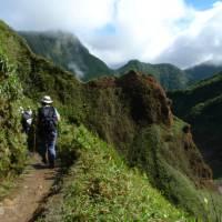 Trekking on the Waitukubuli Trail, Dominica | Michael Eugene