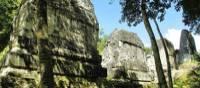 The mossy jungle paths and majestic Mayan ruins at Tikal
