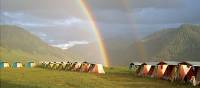 Beautiful afternoon rainbow at camp in Kazakhstan