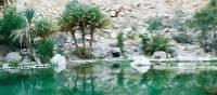 The desert oasis of Wadi Bani Khalid | Caroline Mongrain