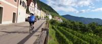 Cycling through the Wachau Valley enroute to Vienna | Jaclyn Lofts