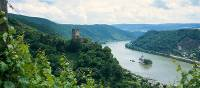 Castles line the Rhine River