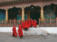 Young Bhutanese monks flow out from the monastery to take a break from their daily prayers. |  <i>Maria Visconti</i>