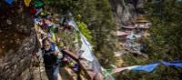 The vibrant trail leading to Taktsang Monastery | Richard I'Anson