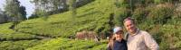 Wandering the tea plantations of the Western Ghats, a richly rewarding experience for young and old |  <i>Kate Baker</i>