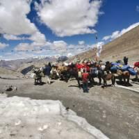 A spectacular Himalayan pass in Ladakh | Adam Mussolum