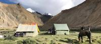 Our camp below the peak of Kangyaze (6400m) on our way to remote Tibetan borderlands | Brad Atwal
