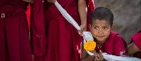 Novice monk at Thiksay Monastery | Richard I'Anson