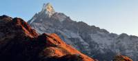 Sun shining on Machapuchare | Erin Williams