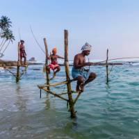 The famous Stilt fisherman of Sri Lanka   Richard I'Anson