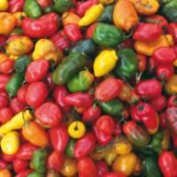 The vibrant colours of Pisac Market, Peru | Ian Williams