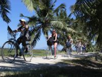 Cycling through rice paddies outside of Hoi An |  <i>Julie Hauber</i>