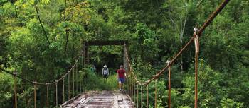 Bridge crossing on our Costa Rica Traverse trip | Michele Eckersley